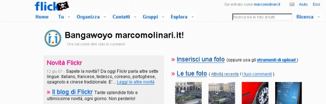 Flickr Pirate